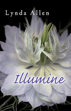 illumine cover